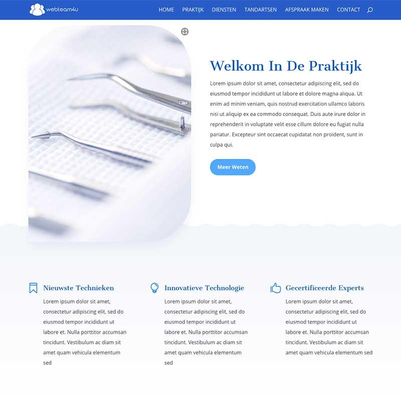 Onepage Premium pakket voorbeeld 6 - Algemene tekst en opsomming met icontjes