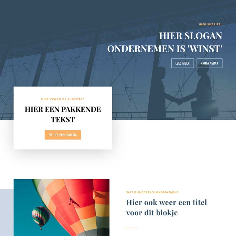 Onepage  - Screenshot website voorbeeld 10