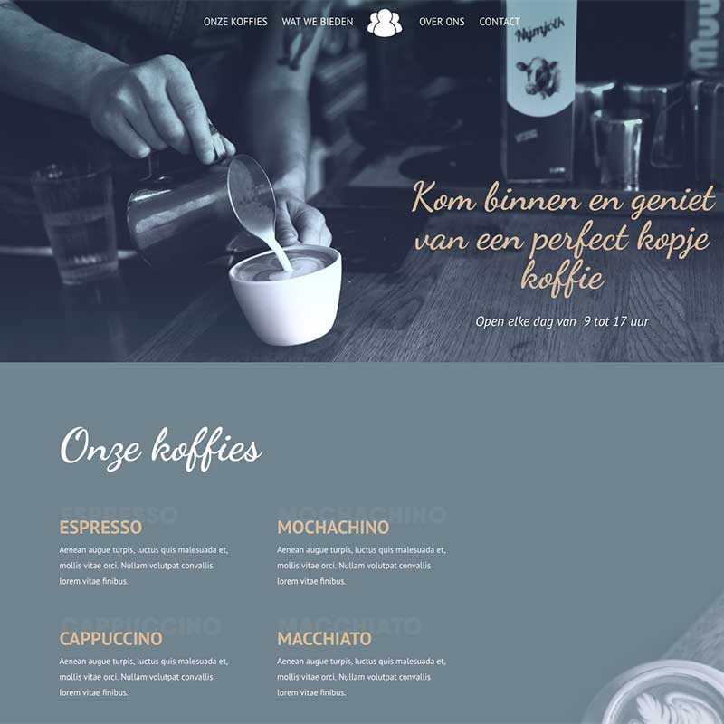 Onepage  - Screenshot website voorbeeld 8
